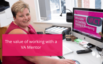The value of working with a VA Mentor